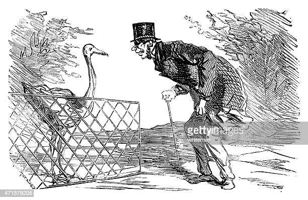 man talking to a flamingo - bending over stock illustrations, clip art, cartoons, & icons