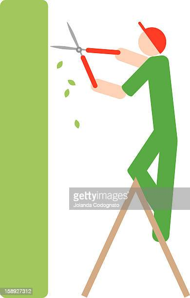 a man trimming a hedge - hedge trimmer stock illustrations, clip art, cartoons, & icons