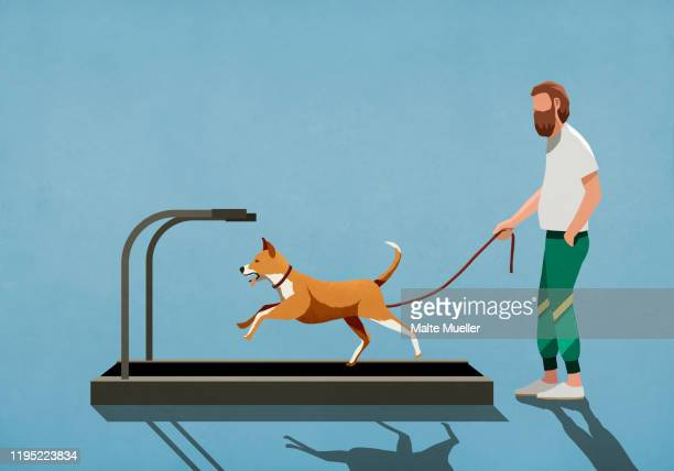 man with leash watching dog running on treadmill - one animal stock illustrations