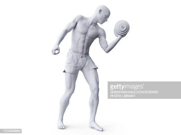 man working out, illustration - anticipation stock illustrations