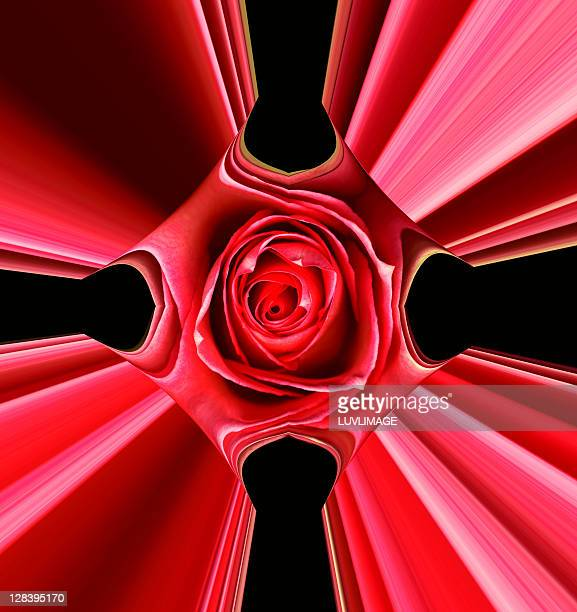 manipulated deep red rose - digital enhancement stock illustrations