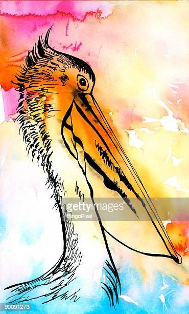 illustrations, cliparts, dessins animés et icônes de aquarelle de marabout (illustration - marabout