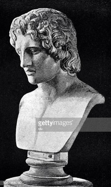 marble bust of alexander the great - alexander the great stock illustrations