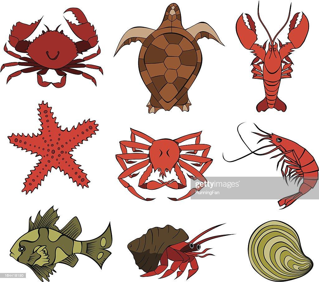 Marine Life 4