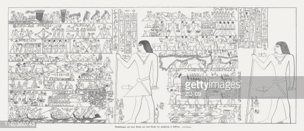 illustrations, cliparts, dessins animés et icônes de mastaba de ptahhotep à saqqara, egypte, gravure sur bois, publié en 1879 - hiéroglyphe