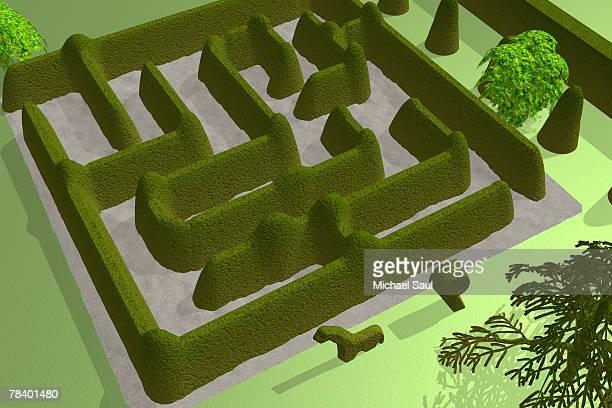 maze - hecke stock-grafiken, -clipart, -cartoons und -symbole