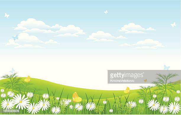meadow - grass stock illustrations, clip art, cartoons, & icons