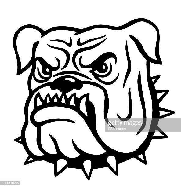 mean bulldog - aggression stock illustrations