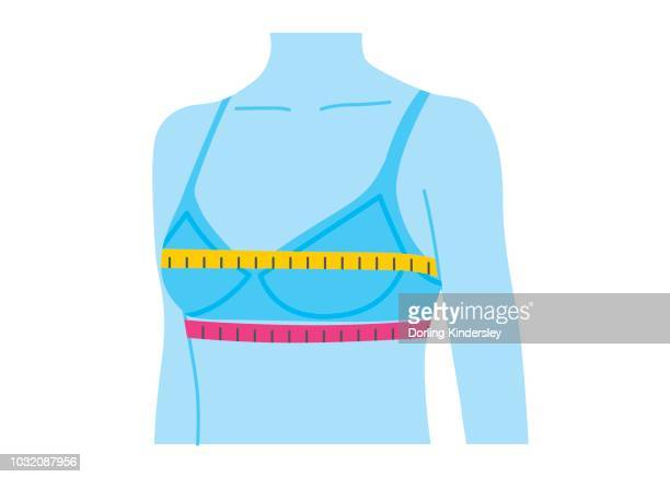 measuring bra size - bra stock illustrations, clip art, cartoons, & icons