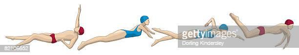 stockillustraties, clipart, cartoons en iconen met medley relay, four swimmers performing backstroke, breaststroke, freestyle and butterfly stroke - match sport