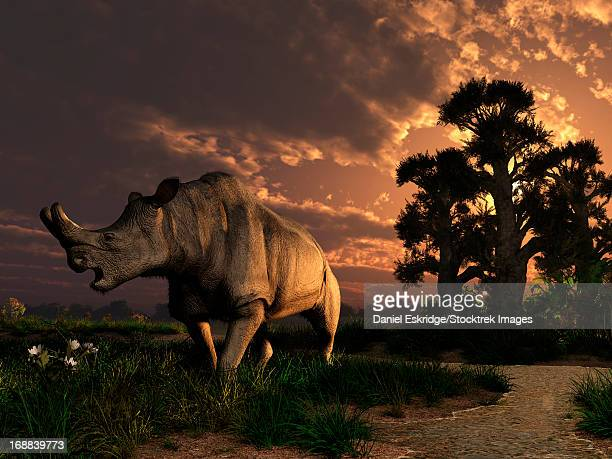 A Megacerops grazing a prehistoric landscape. Only one flower left, then breakfast is done for this double horned relative of the modern rhinoceros.