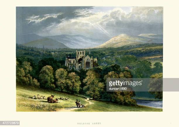 melrose abbey, roxburghshire, scotland - landscape stock illustrations, clip art, cartoons, & icons