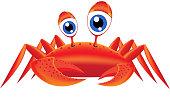 Merry-eyed crab.