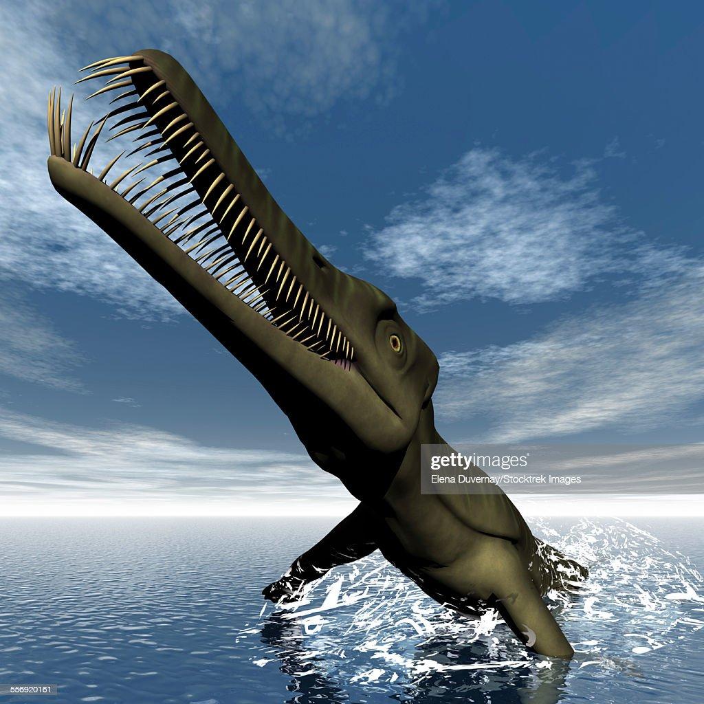 Mesosaurus dinosaur jumping out of the water. : stock illustration