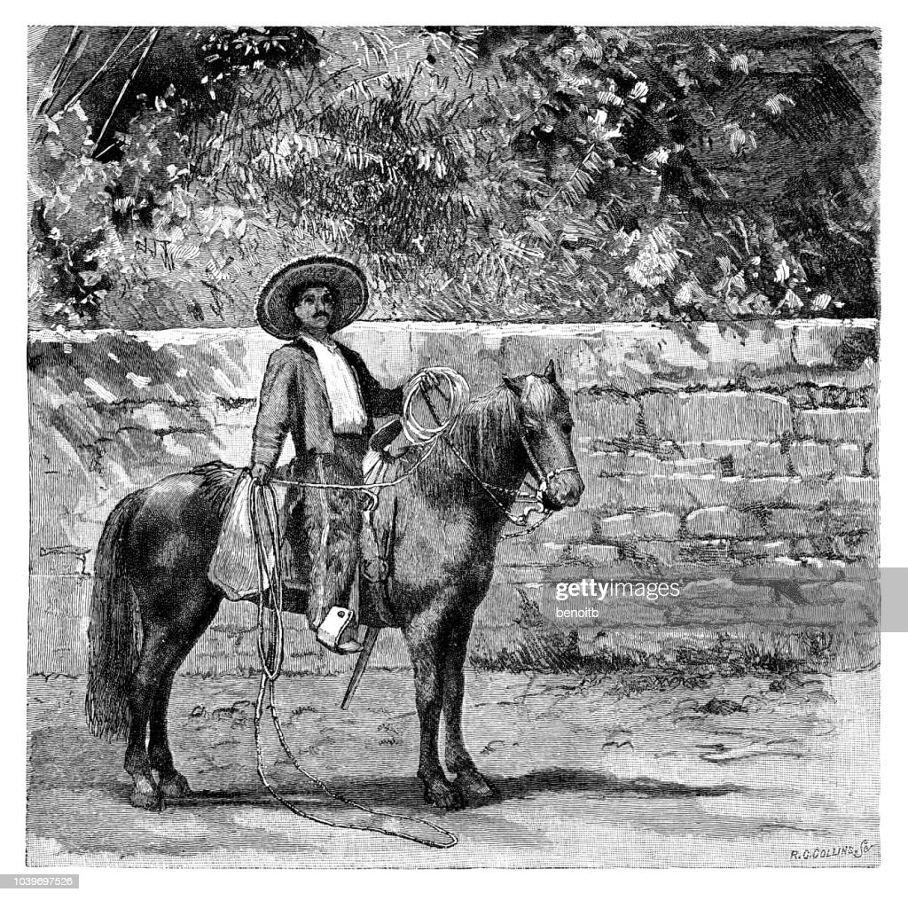Mexican cowboy : stock illustration