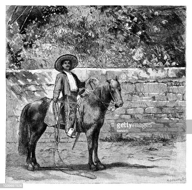 mexican cowboy - sombrero stock illustrations