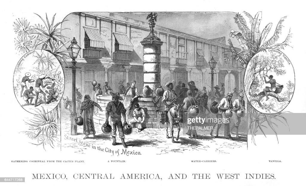 Mexico Central america scene illustration 1886 : stock illustration