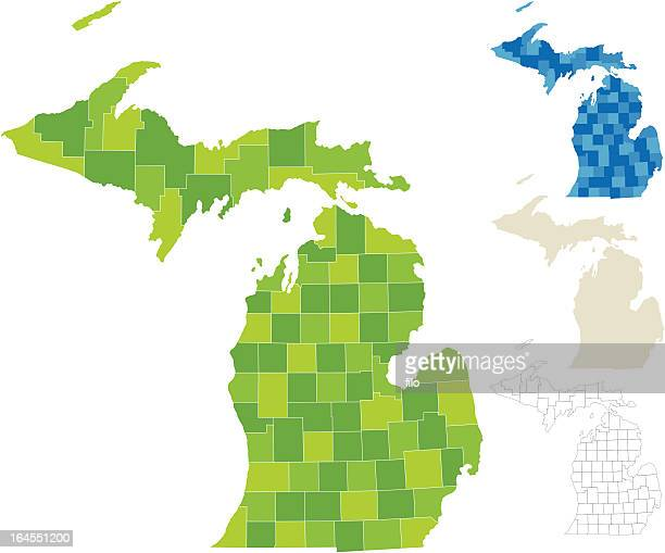 michigan county map - michigan stock illustrations