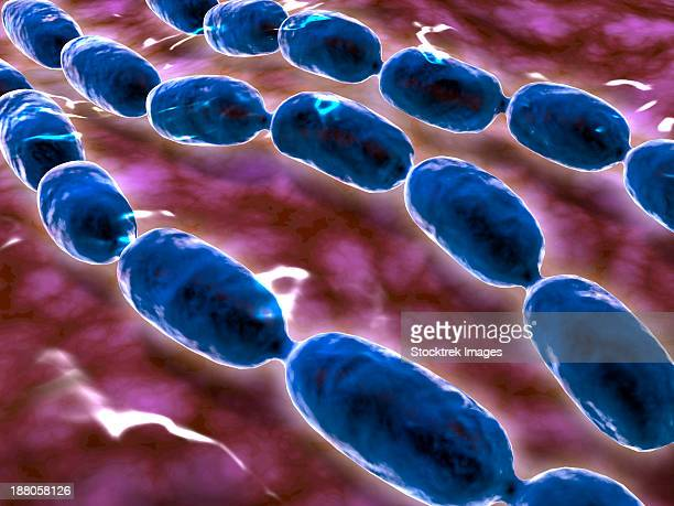 microscopic view of bacterial pneumonia. bacterial pneumonia is a type of pneumonia caused by bacterial infection. - rod stock illustrations, clip art, cartoons, & icons