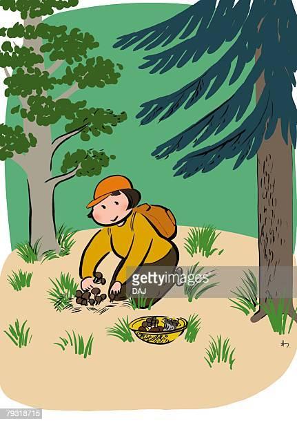 ilustraciones, imágenes clip art, dibujos animados e iconos de stock de mid adult woman sitting and picking up mushroom alone in mountain, three quarter length - mujeres de mediana edad