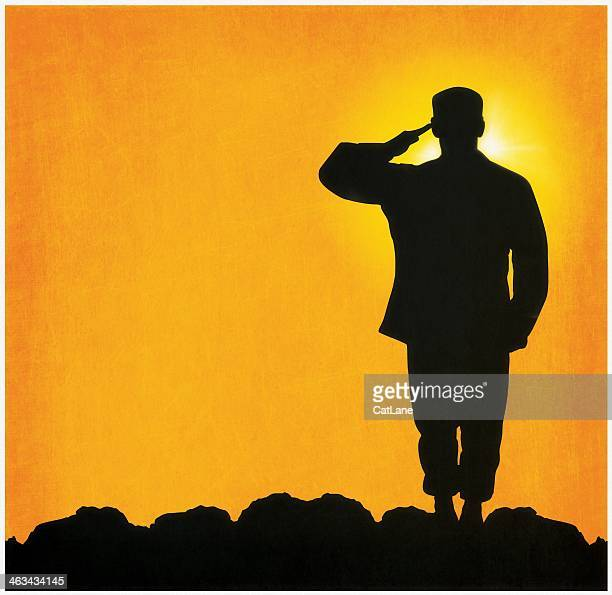 military salute - us military stock illustrations, clip art, cartoons, & icons
