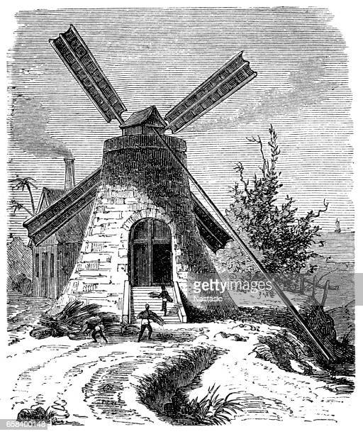 Mill ,sugar production