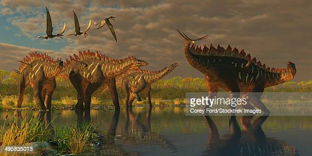 ilustraciones, imágenes clip art, dibujos animados e iconos de stock de a miragaia dinosaur bellows in protest as three others try to join him in the marsh. three dorygnathus pterosaurs fly overhead. - paleobiología