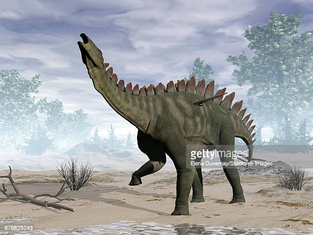 miragaia dinosaur rearing up. - scute stock illustrations, clip art, cartoons, & icons