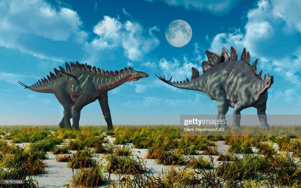 Miragi& Stegosaurus Dinosaurs.Both Alive During Earths Juassic ErOf Time. : Stock Illustration