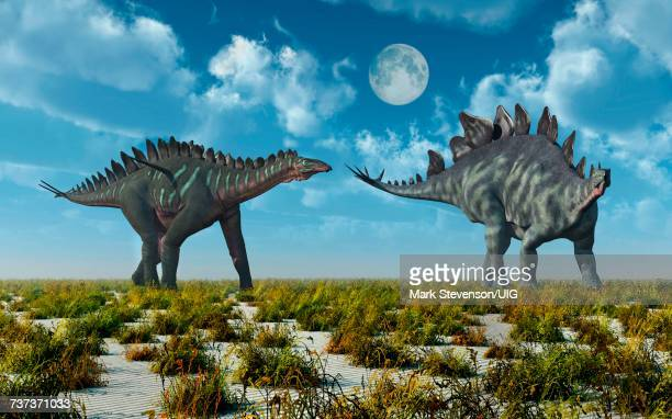 miragi& stegosaurus dinosaurs.both alive during earths juassic erof time. - thyreophora stock illustrations, clip art, cartoons, & icons