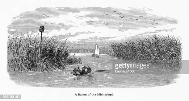 Mississippi River Bayou, Louisiana, United States, American Victorian Engraving, 1872