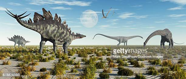 A mixed herd of Stegosaurus and Diplodocus dinosaurs during Earths Jurassic period.