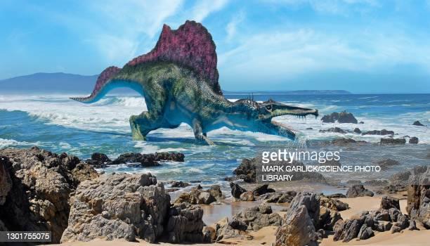 modern reconstruction of spinosaurus - nautical vessel stock illustrations