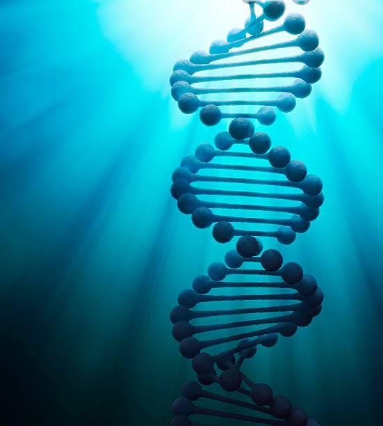 DNA Molecule, Artwork Wall Art