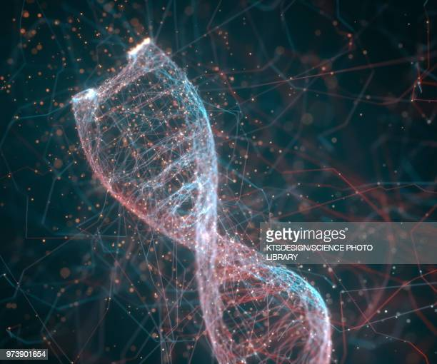 dna molecule, illustration - dna stock illustrations