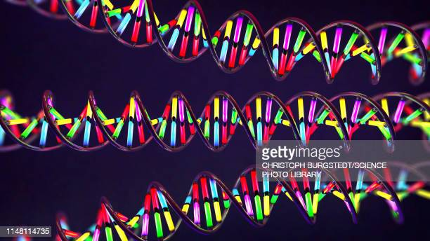 dna molecules, illustration - built structure stock illustrations