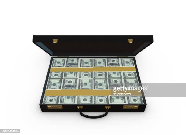 Money In Briefcase - 100 dollar