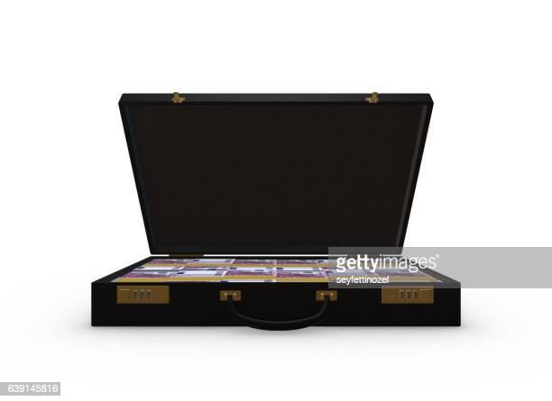 Money In Briefcase -  500 Euro