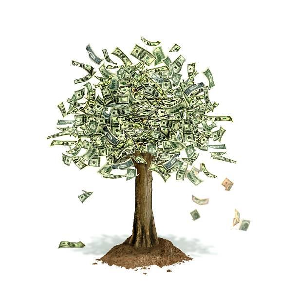 Money Tree, Conceptual Artwork Wall Art