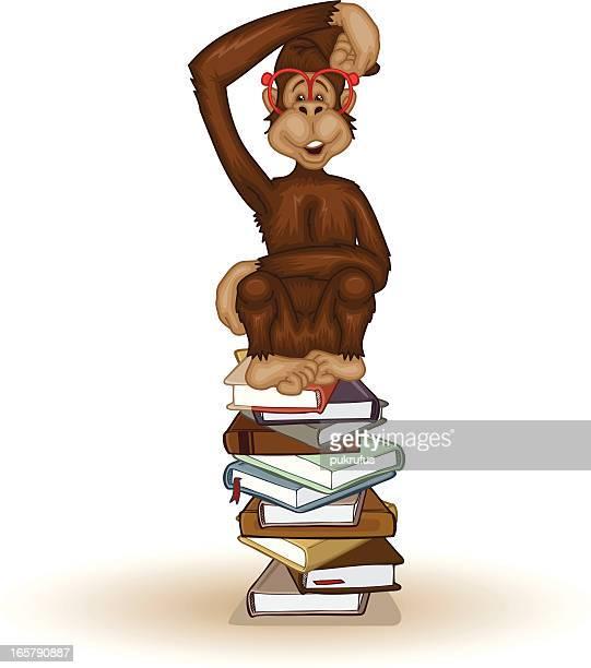 Monkey Education