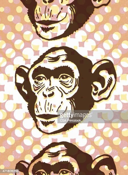 monkey - chimpanzee stock illustrations, clip art, cartoons, & icons
