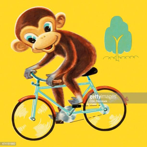 Macaco Bicicleta de Equitação