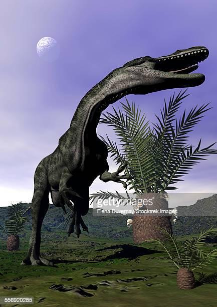 Monolophosaurus dinosaur roaring next to cycadeoidea plant.