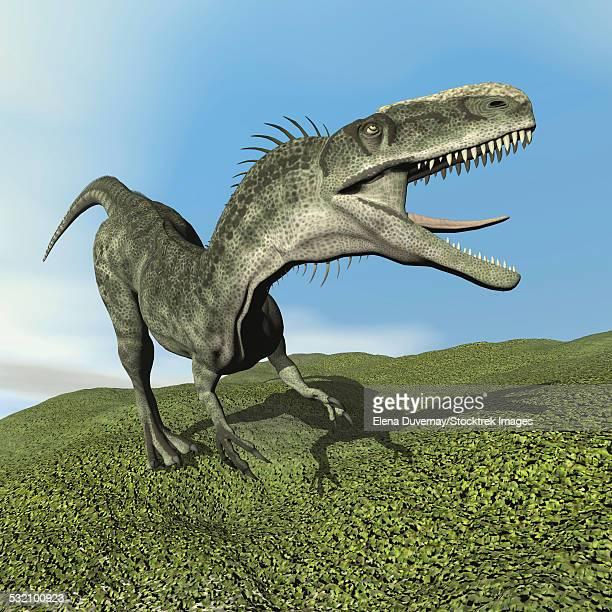 Monolophosaurus dinosaur walking on the grass.