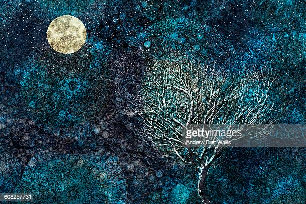 moonlit winter tree against a starry sky - spirituality stock illustrations