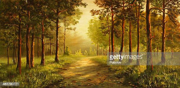 morning in a pine grove - panoramic stock illustrations