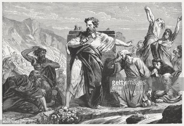moses destroys the golden calf (exodus 32, 20), published 1886 - calf stock illustrations, clip art, cartoons, & icons