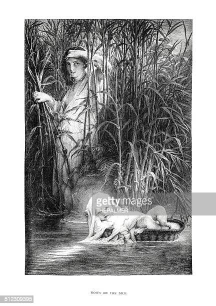 moses on the nile engraving - old testament stock illustrations