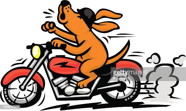 motorcycle dog - howling stock illustrations, clip art, cartoons, & icons