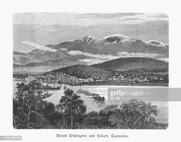 mount wellington and hobart, tasmania, australia, wood engraving, published 1897 - hobart tasmania stock illustrations